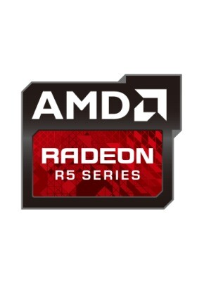 Radeon_R5_M320_2GB